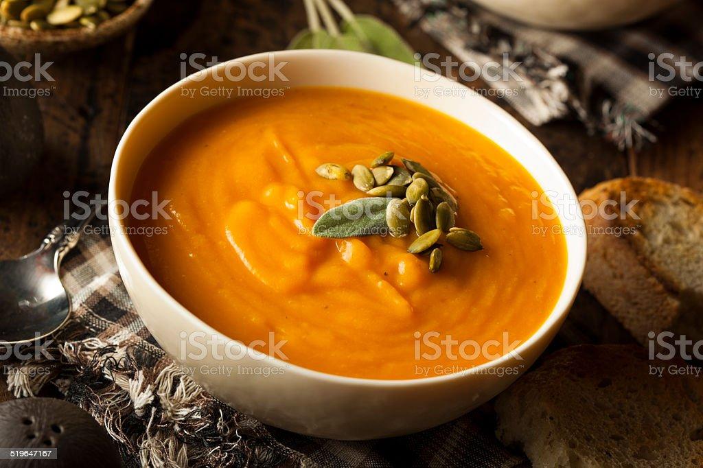 Homemade Autumn Butternut Squash Soup stock photo