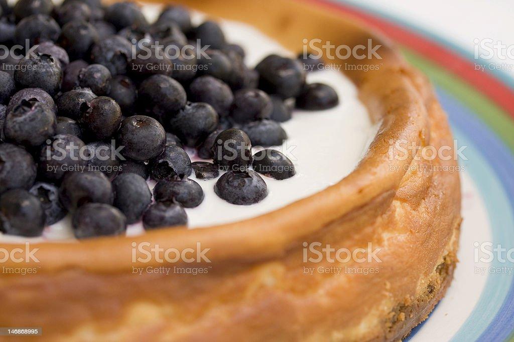 Homemade Blueberry Cheesecake royalty-free stock photo
