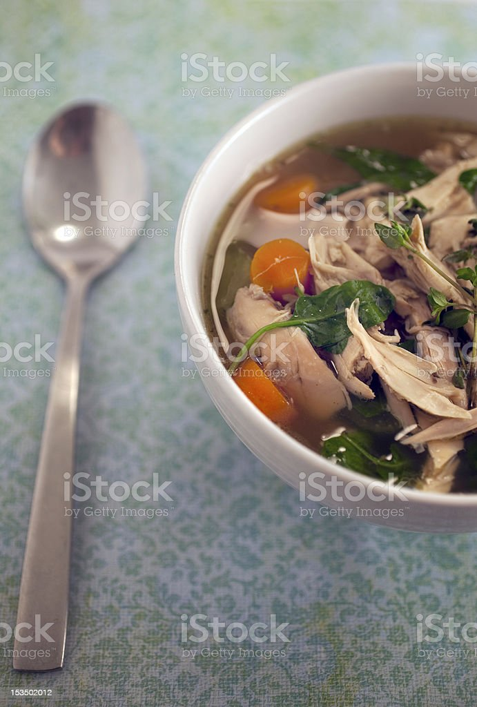 Homemade Chicken noodle soup royalty-free stock photo