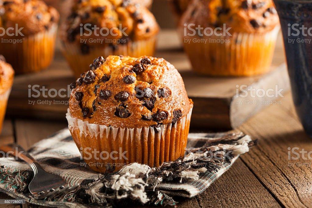 Homemade Chocolate Chip Muffins stock photo