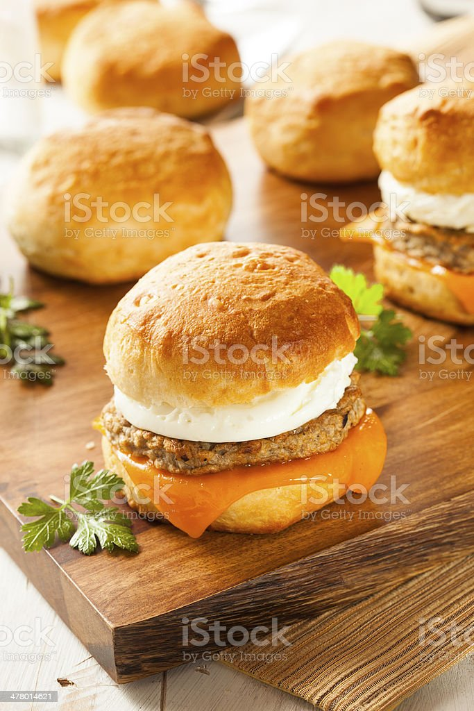 Homemade Egg Sandwich with Sausage and Cheese royalty-free stock photo