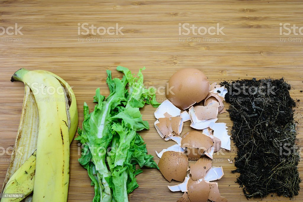 homemade fertilizer made from kitchen waste stock photo