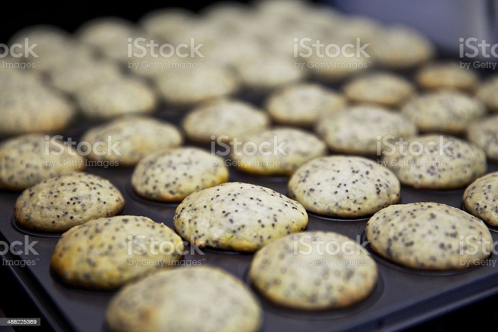 Homemade Lemon Poppyseed Muffin stock photo