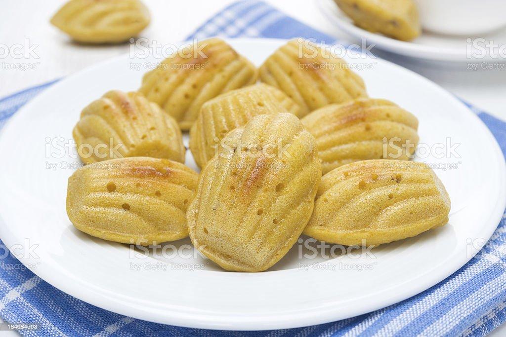 homemade madeleine cookies royalty-free stock photo
