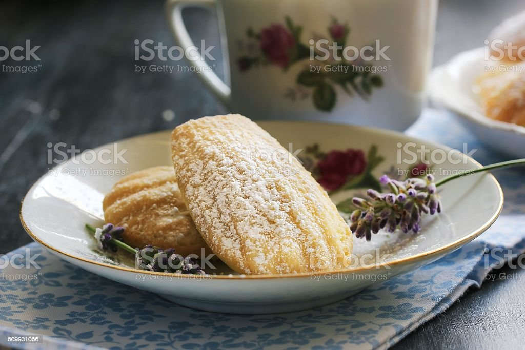 Homemade Madeleines / French Tea cake , selective focus stock photo