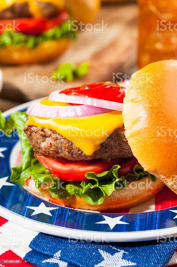 Homemade Memorial Day Hamburger Picnic stock photo