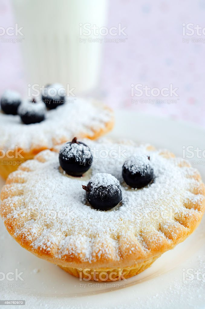 Homemade mini cakes with berries and icing sugar stock photo
