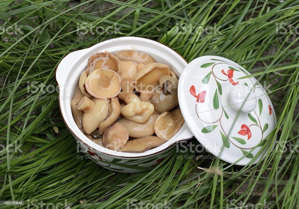 Homemade pickled mushrooms stock photo