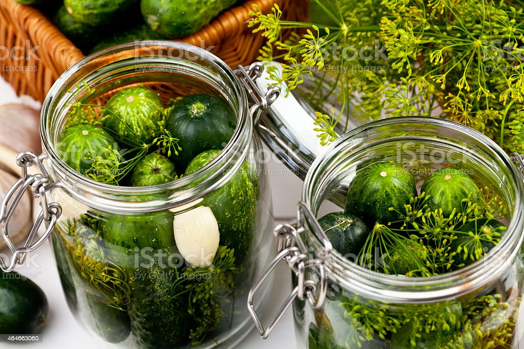 Homemade pickles in brine with garlic dill and horseradish stock photo