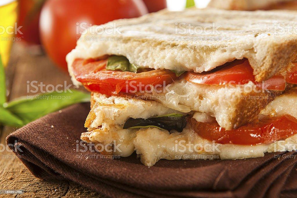 Homemade Tomato and Mozzarella Panini stock photo