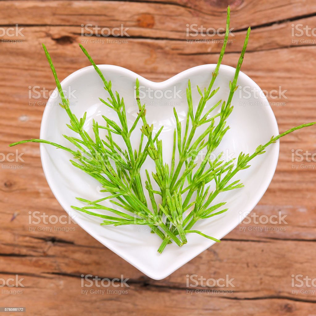 Homeopathy and cooking with horsetail stock photo