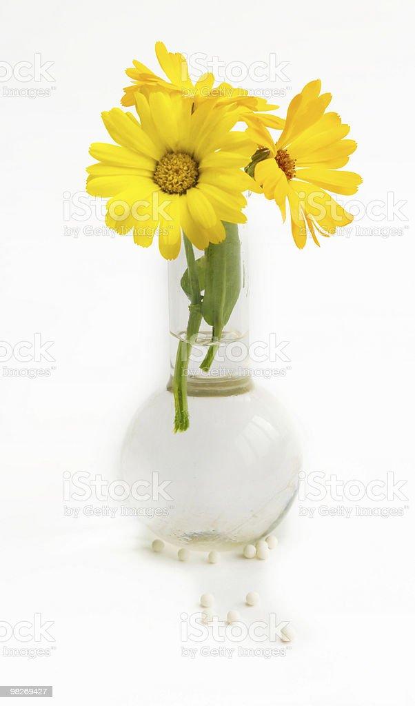 Homeopathy stock photo