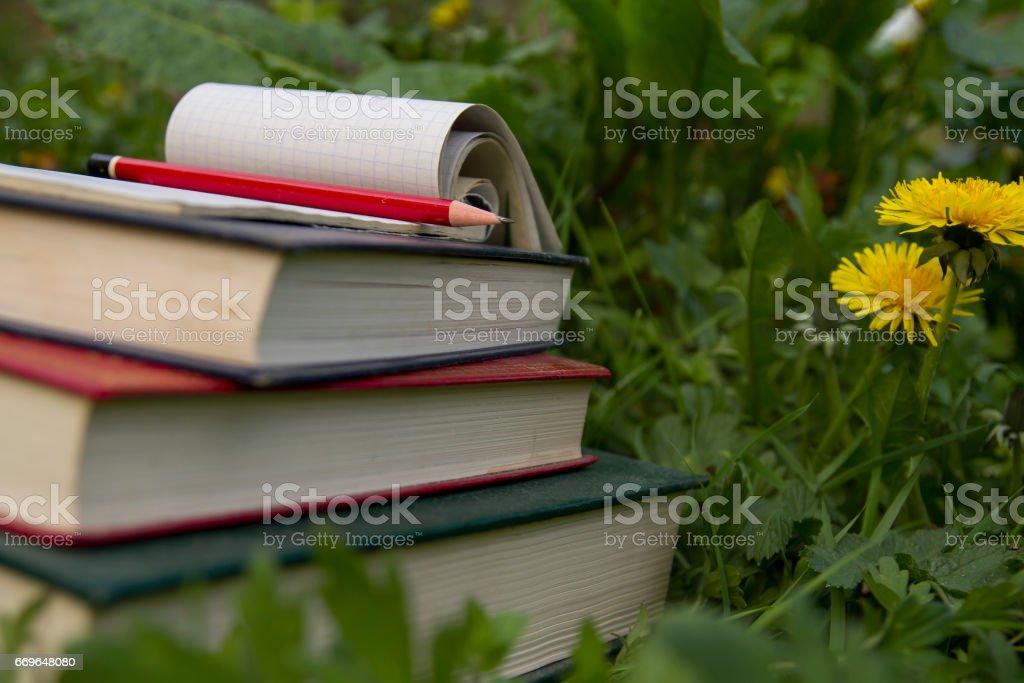 homework in the garden stock photo