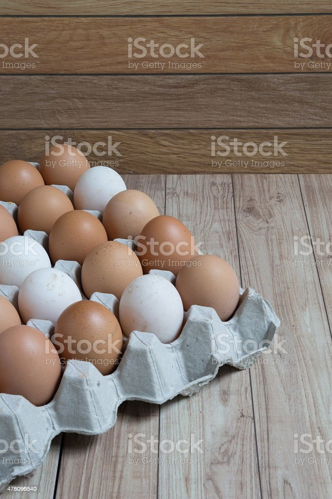 Homogeneous concept : Different kinds of eggs stay together homo stock photo