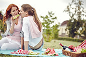 homosexual couple having picnic