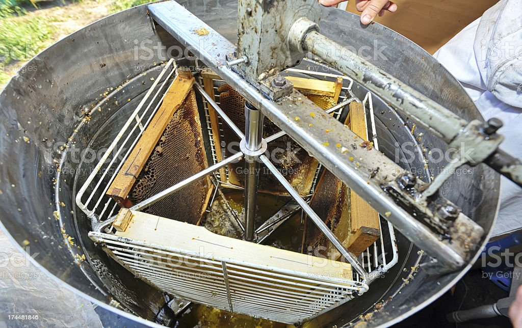 honey extraction machinery stock photo