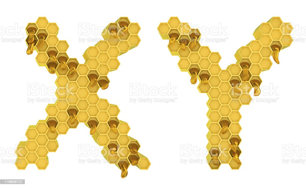Honey font X and Y letters isolated royalty-free stock photo