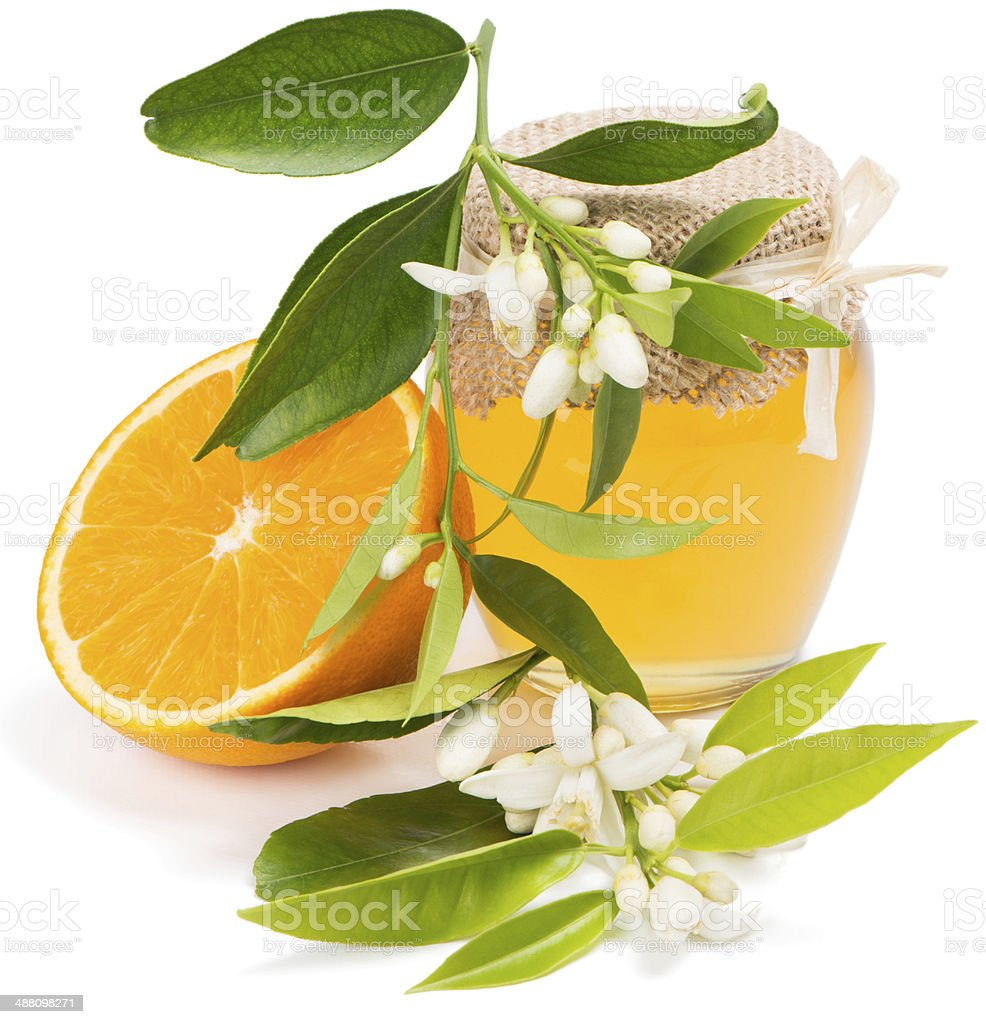 honey, fruit, blossom of orange stock photo
