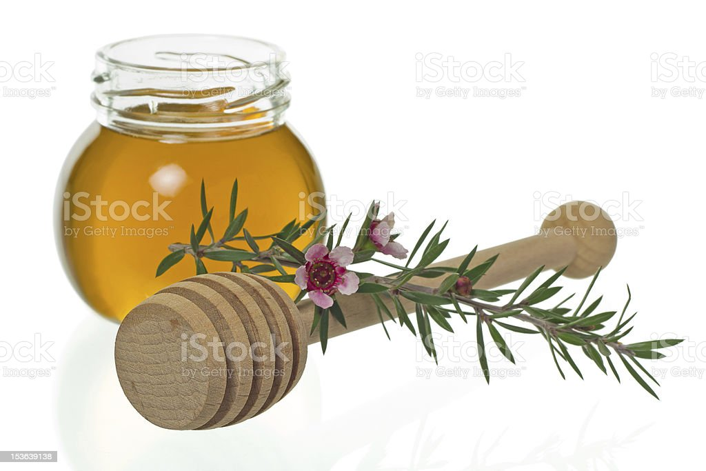 Honey with dipper and manuka flower (Leptospermum) royalty-free stock photo