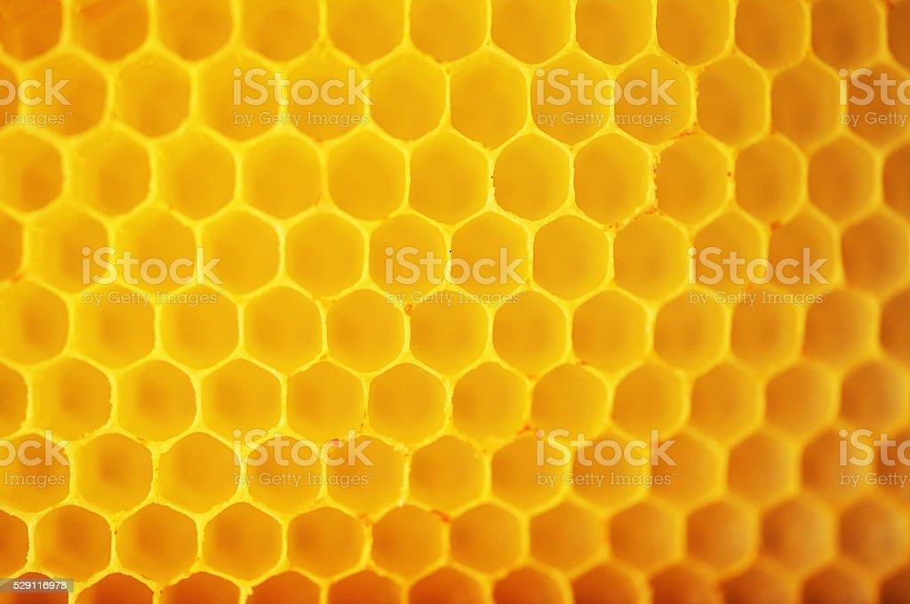 Honeycomb Patterns stock photo