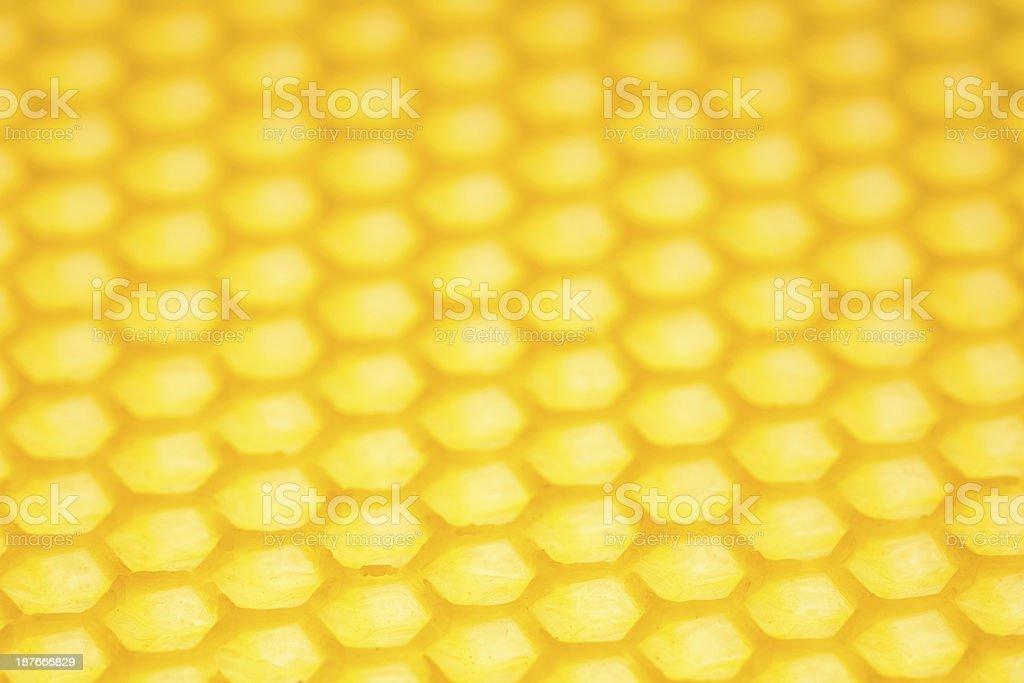 Honeycomb-close up royalty-free stock photo