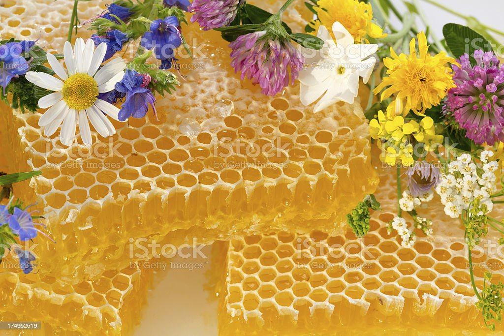 honeycombs and flowers detail royalty-free stock photo