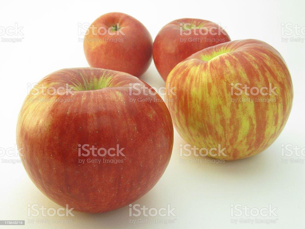 Honeycrisp Apples. royalty-free stock photo