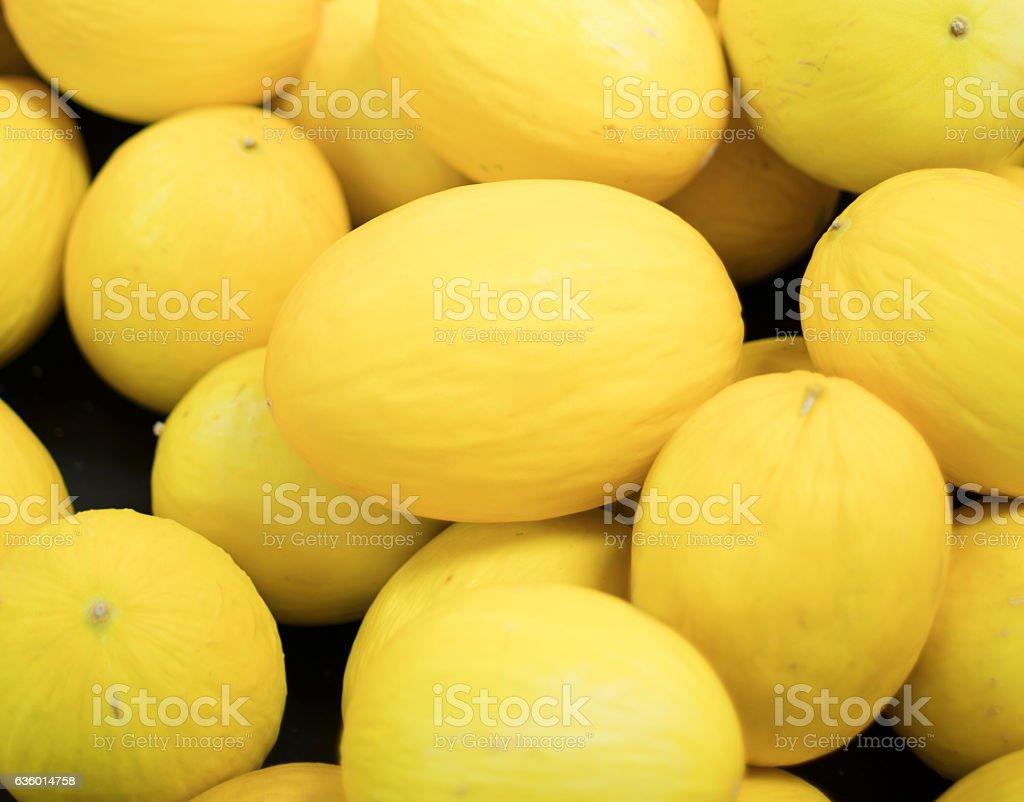 Honeydew Melons stock photo