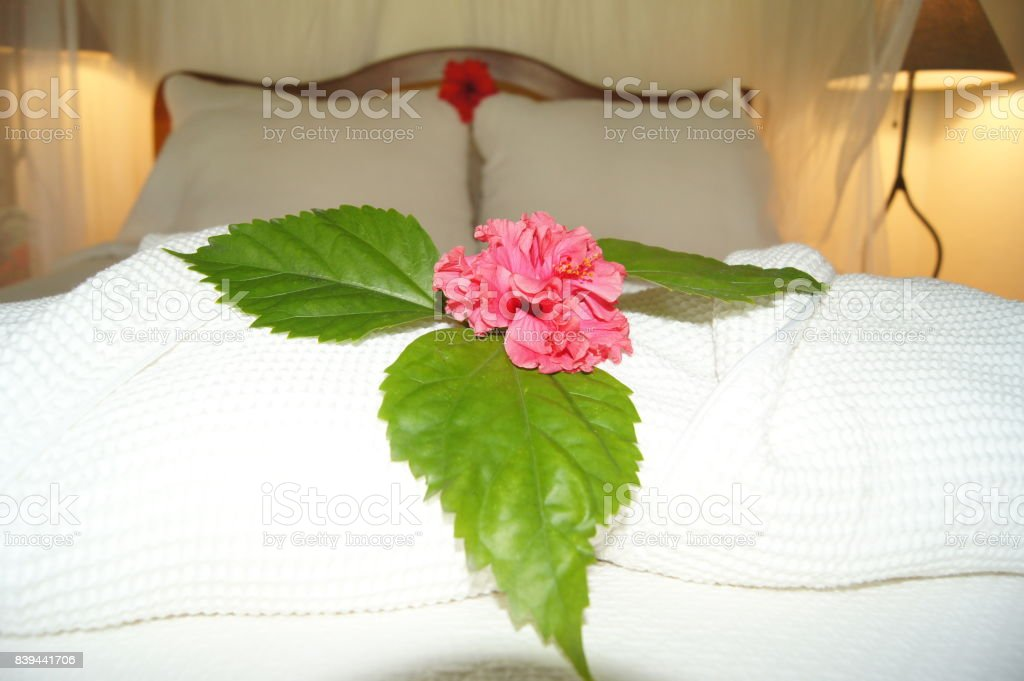 Honeymoon Bed with Pink Hibiscus Flower stock photo