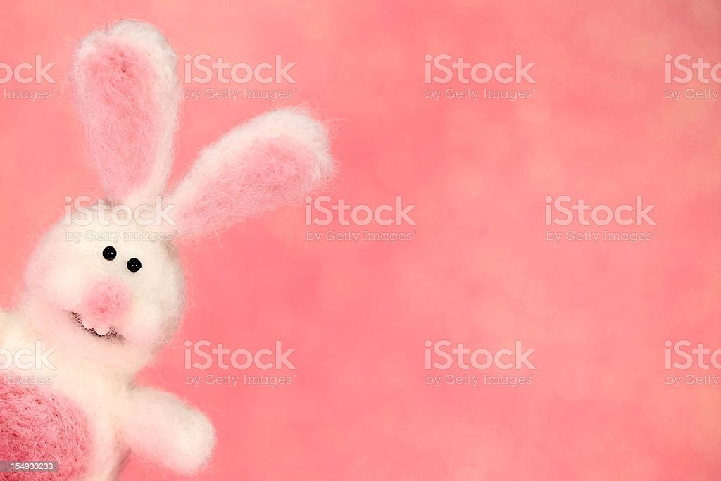 Honeysuckle colored Bunny Rabbit stock photo