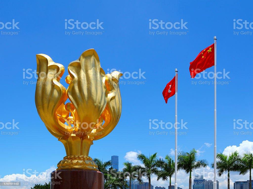 Hong Kong Golden Bauhinia Flower Square stock photo