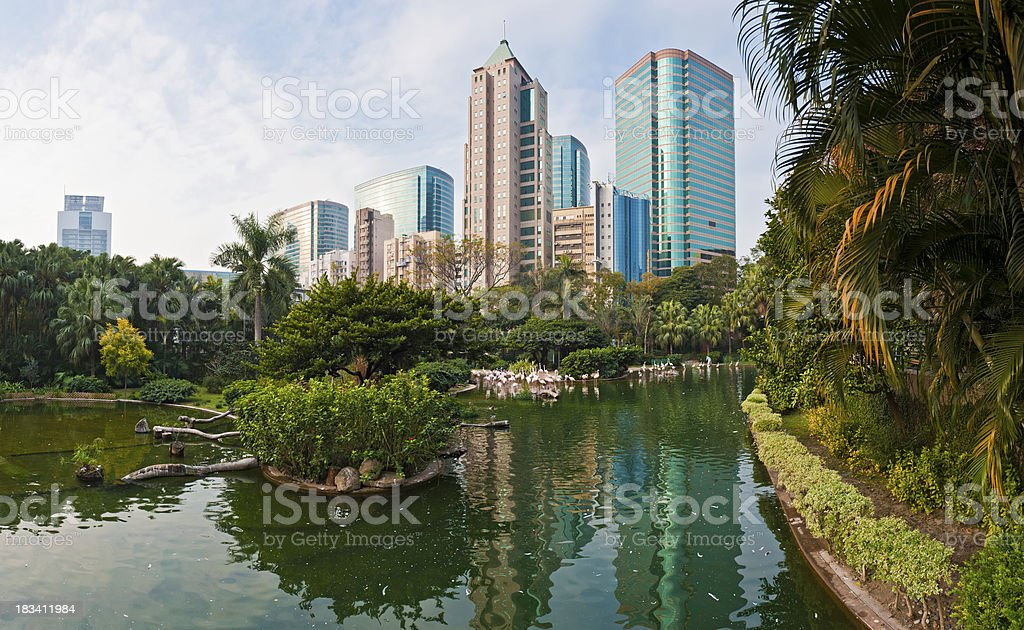 Hong Kong Kowlook Park flamingoes lake Canton Road towers China stock photo