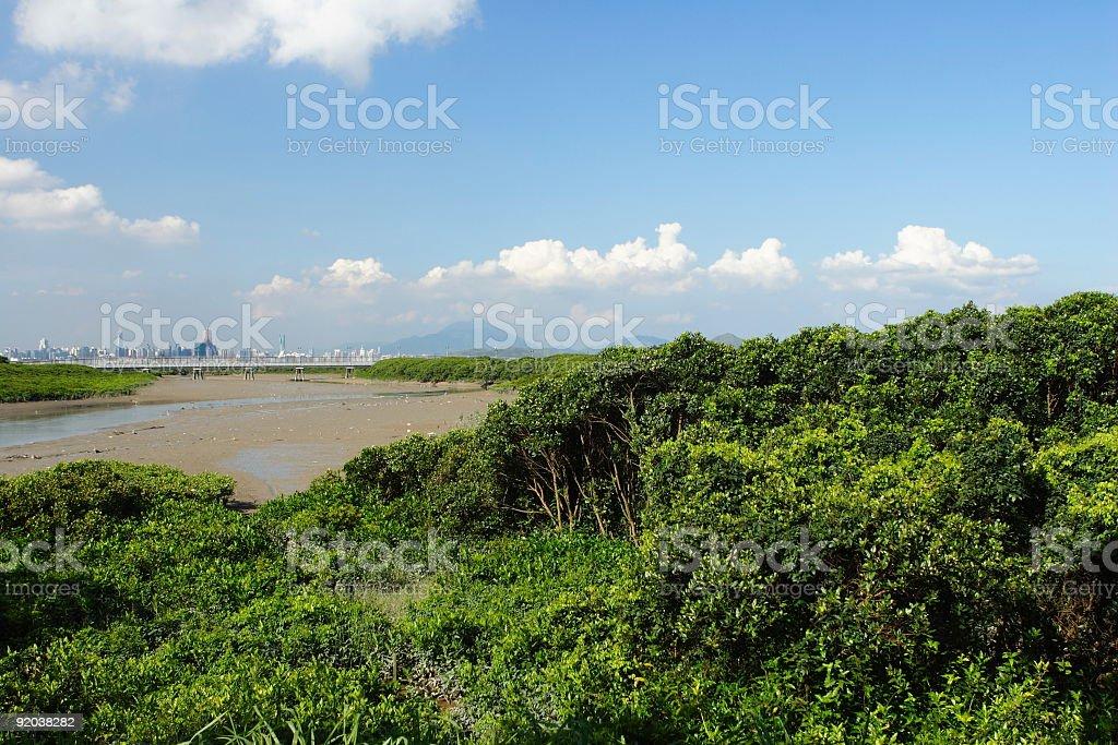 Hong Kong Wetland royalty-free stock photo