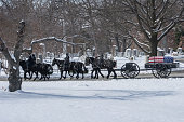 Honor Guard on horseback pulling caisson At Arlington National Cemetery