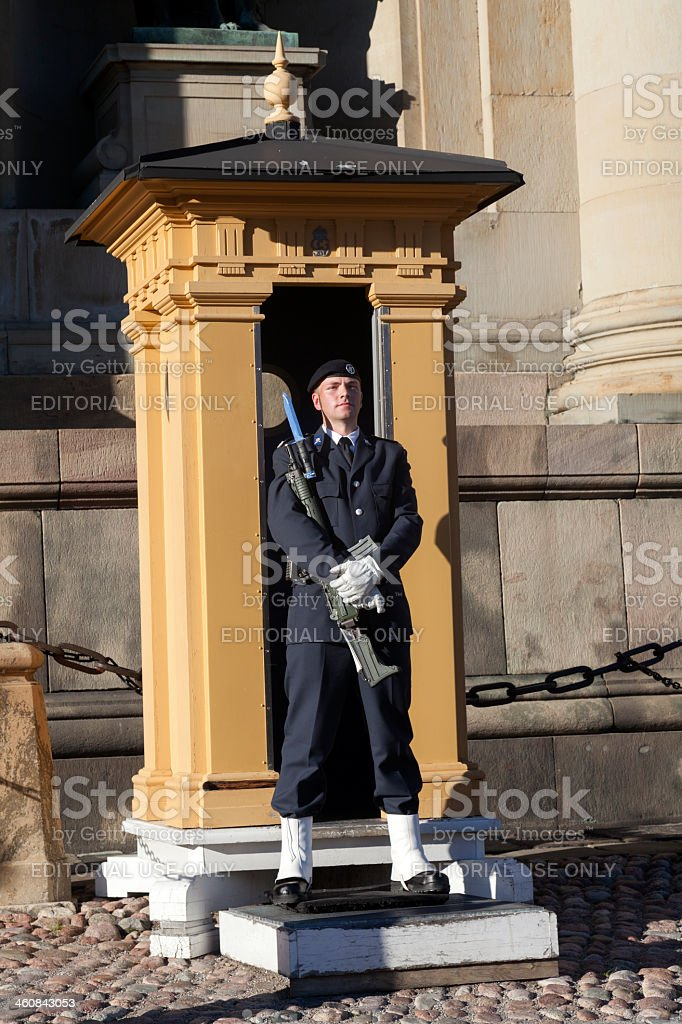 Honor guard stands royalty-free stock photo