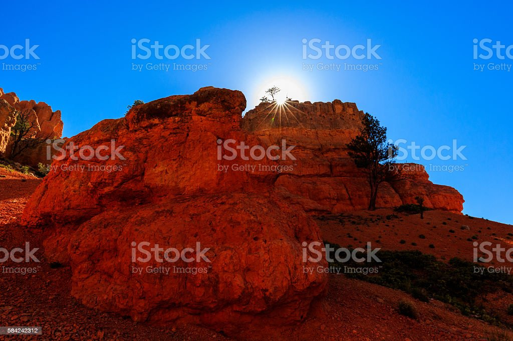 Hoodoos in Red Canyon in Utah, USA. stock photo