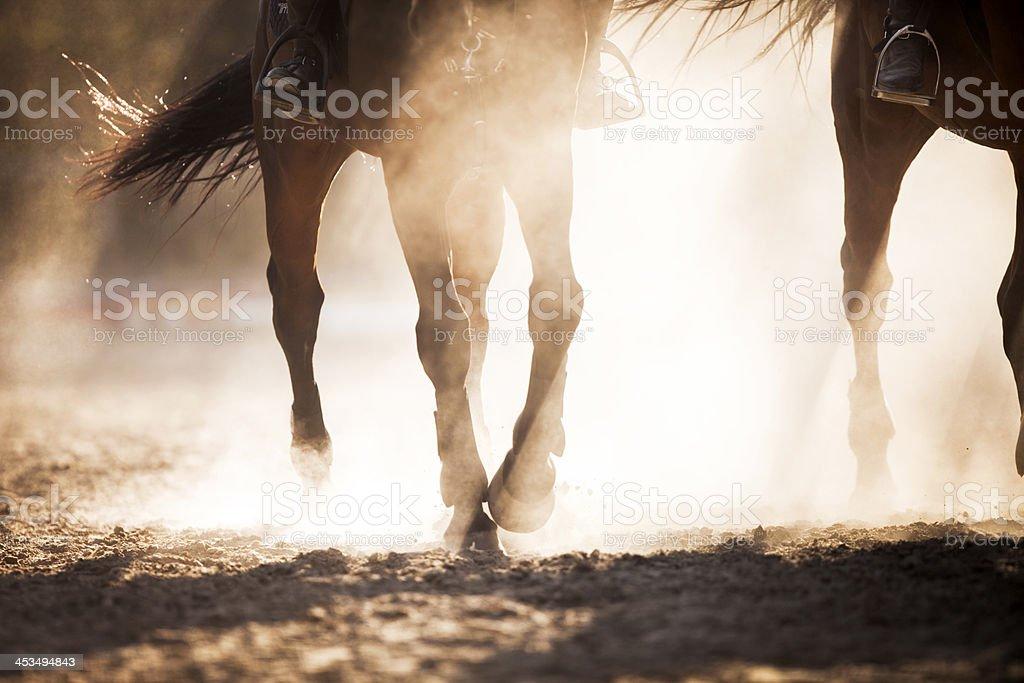 Hoof dust. stock photo