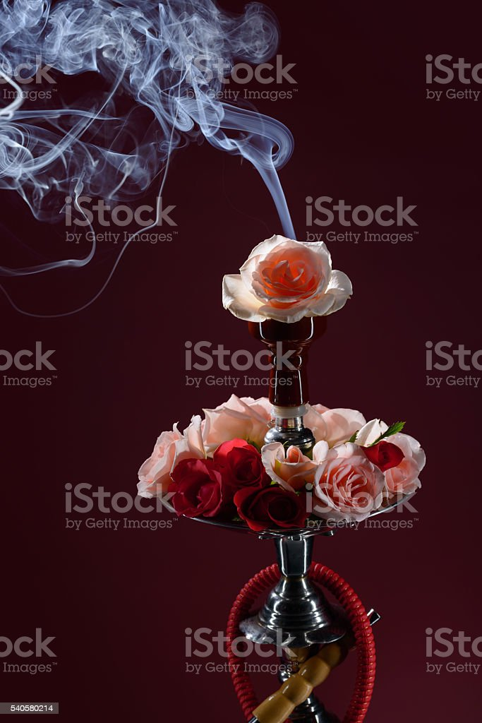Hookah and rose stock photo