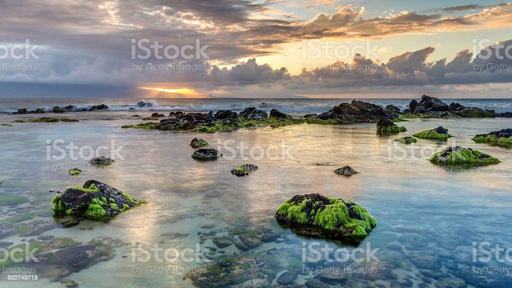 Hookipa sunset rays stock photo