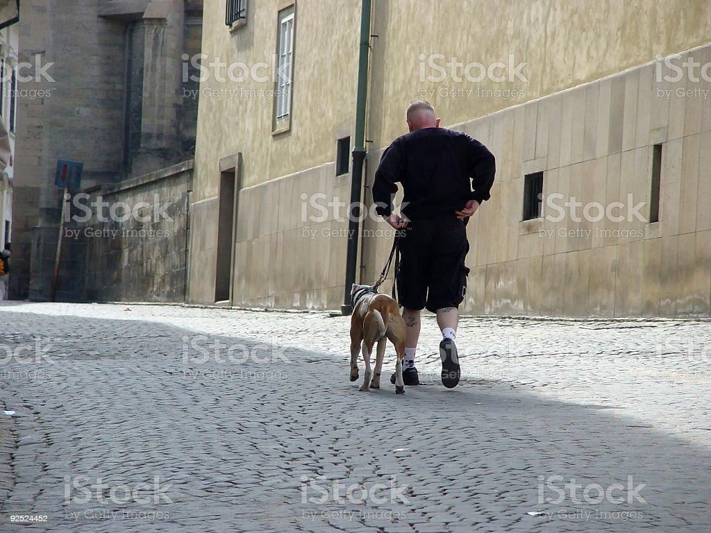 Hooligan with pit bulldog stock photo