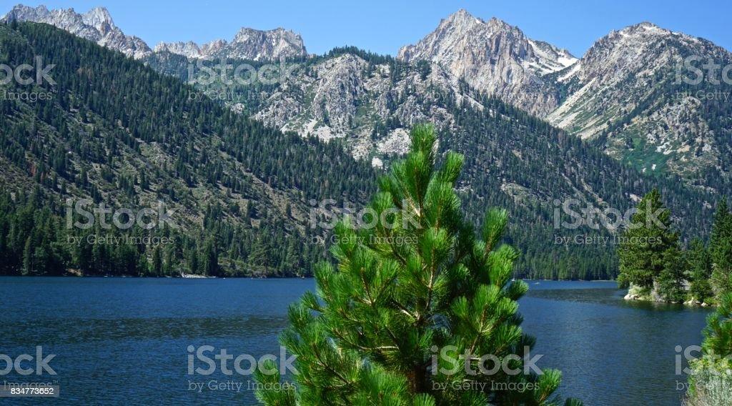 Hoover Wilderness Edge stock photo