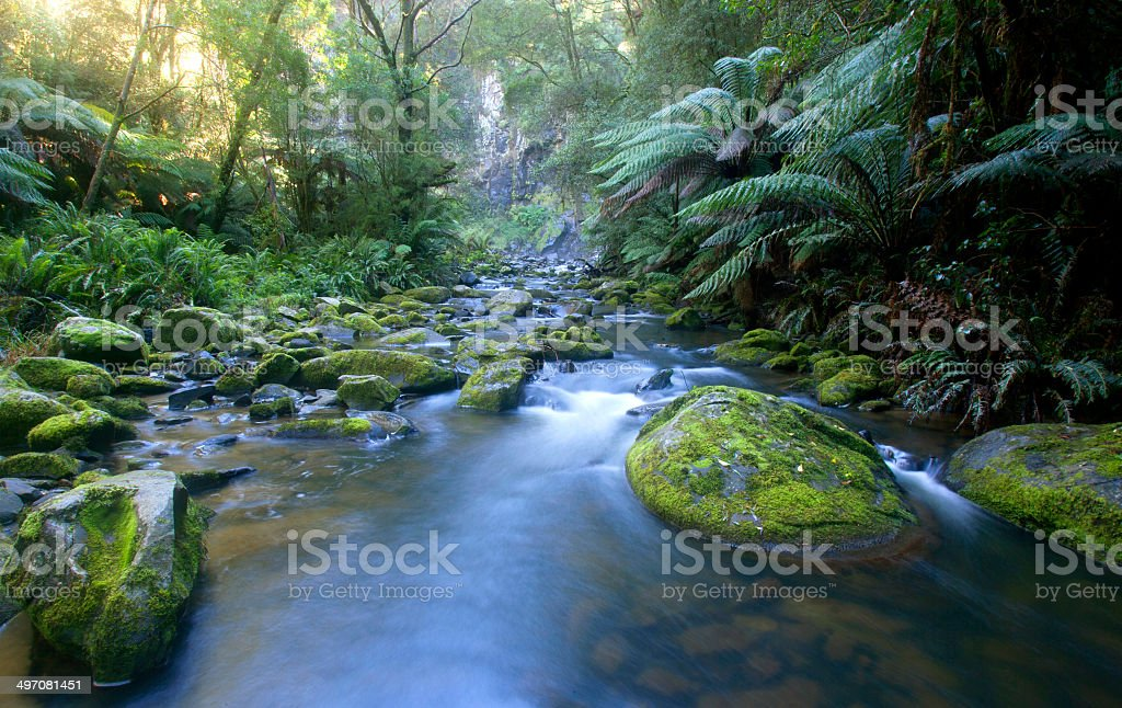 Hopetoun Falls at Otway Ranges stock photo