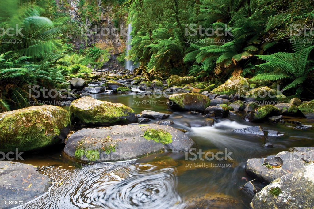 Hopetoun Falls in the Otway Ranges along the Great Ocean Road in Victoria, Australia stock photo