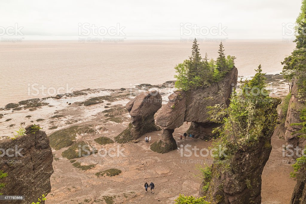 Hopewell Rocks at Low Tide stock photo