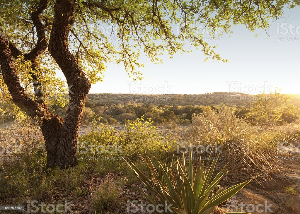 Horizontal landscape. Sunset in Texas hill country. USA stock photo