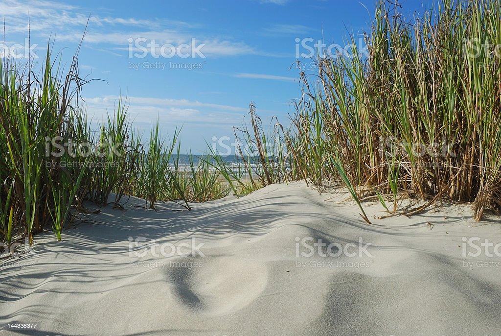 Horizontal Scenic Beach view from sand dunes stock photo