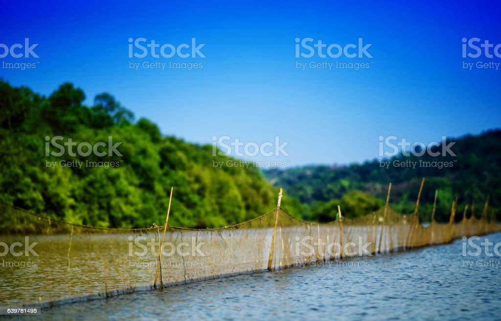Horizontal vivid day fishing on indian river background backdrop stock photo