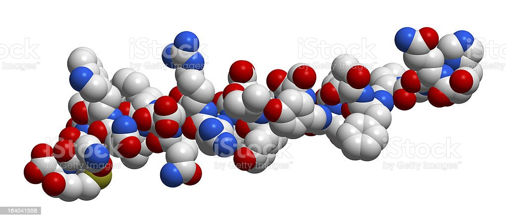 Hormone glucagon 3D molecular structure royalty-free stock photo