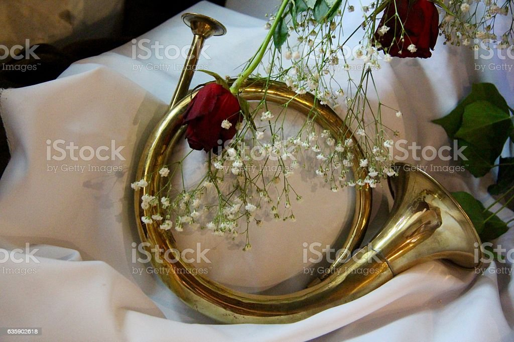 Horn and rosebuds stock photo