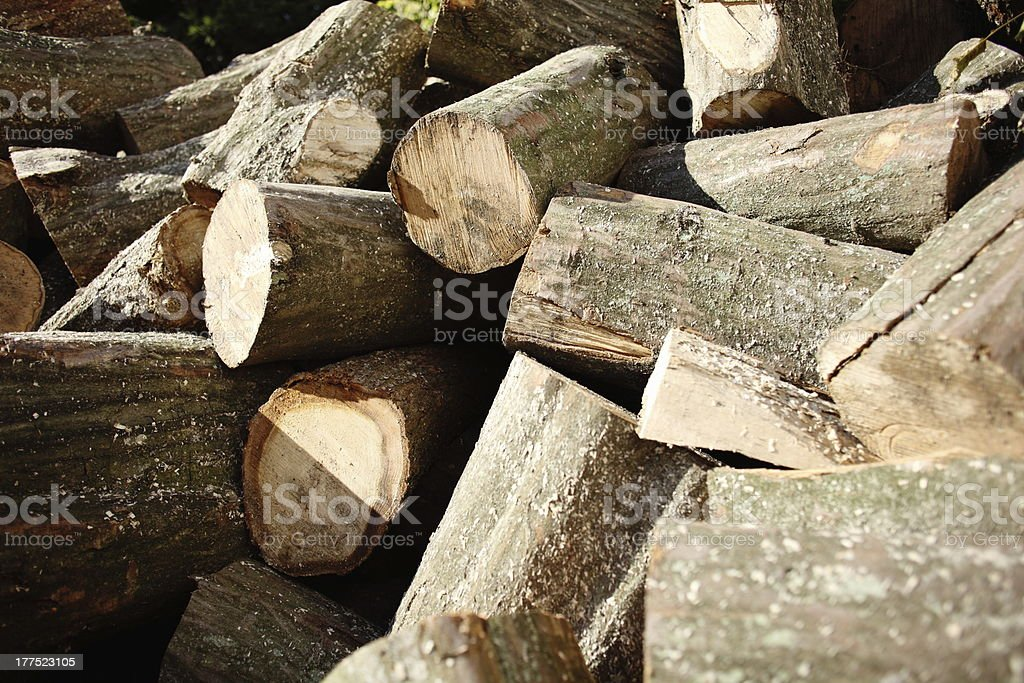 hornbeam firewood royalty-free stock photo